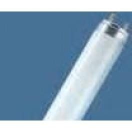 L 36W/640 G13 4000К лампа люм.  Osram