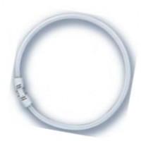 Лампы Osram люминесцентные T5  цоколь 2Gx13 d=16mm   (кольцевые FC)