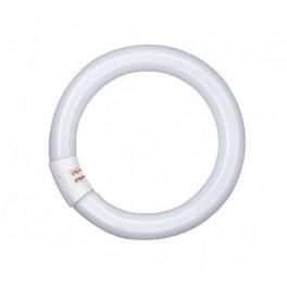 L 22W/865 C G10Q лампа люм. кольцевая Osram