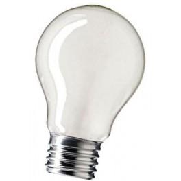40A1/F/E27 40W лампа накал. груша мат. GE