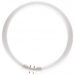 Лампа TL5 CIRCULAR SUPER 80 PRO 22W/ 830 2GX13 d16xD225 PHILIPS