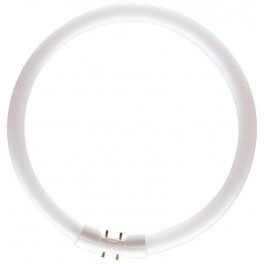 Лампа TL5 CIRCULAR SUPER 80 PRO 40W/ 830 2GX13 d16xD300 PHILIPS