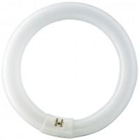Лампы Philips люминесцентные MASTER TL-E Circular