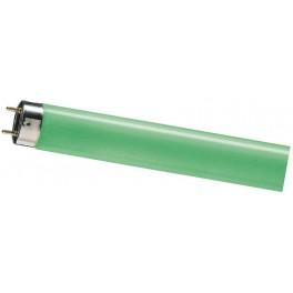 TL-D 18W/17 зелёная лампа люм. Philips