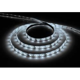 Cветодиодная LED лента LS604, 60SMD(2835)/м 4.8Вт/м  1м IP65 12V 6500К