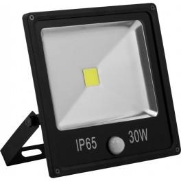 Светодиодный прожектор с встроенным датчиком LL-862 IP65 30W 6400K