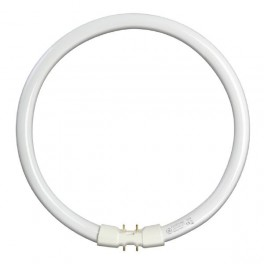 Лампа GE FC22W/T5/830 2GX13