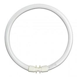 Лампа GE FC55W/T5/840 2GX13