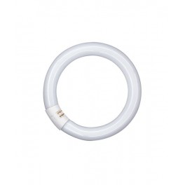 Лампа L 32/ 827 C G10q 307mm 2700K OSRAM