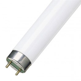 Лампа L 58/76 G13 D26mm 1500mm (гастрономия) OSRAM