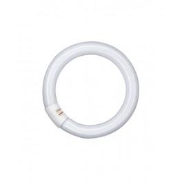 Лампа L 40/ 840 C G10q 409mm 4000K OSRAM