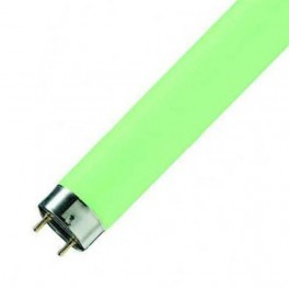 Лампа L36/66 G13 D26mm 1200mm (зеленая) - цветная
