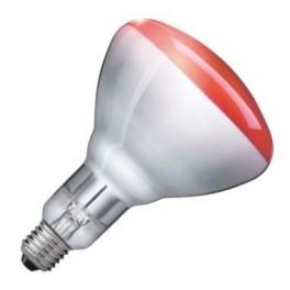 Лампа PHILIPS IR250RH BR125 E27 230-250V d125x181 красная