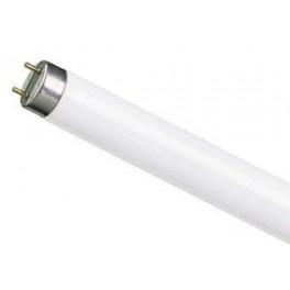 Лампа TL-D 15W/ 640 G13 PHILIPS