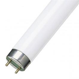 Лампа TL-D 58W/ 640 G13 PHILIPS 1250шт/палл