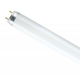 Лампа люминесцентная L 58W/640 G13 OSRAM смол. 4008321959843/