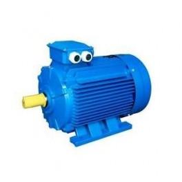 Электродвигатель 5АИ 112 M2 7.5/3000 IM1081