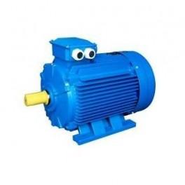 Электродвигатель АИР 100 L4 4.0/1500 IM1081 Могилев