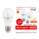 Лампа светодиодная LED Elementary A60 12Вт E27 2700К ПРОМО (уп.2шт) Gauss