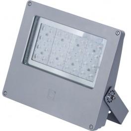 Прожектор LEADER LED 100 D15 5000K