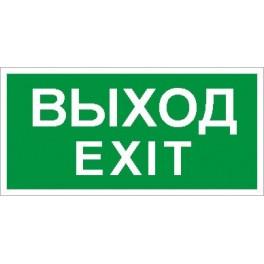 ПЭУ 011 Выход/Exit (130х260)